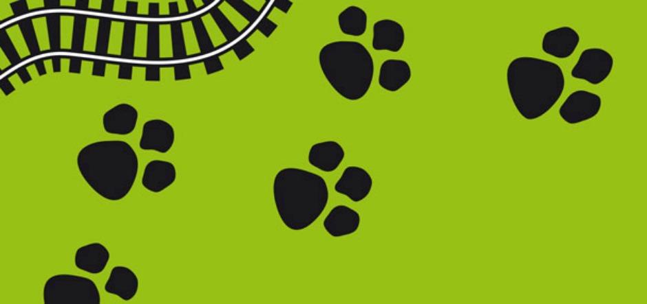 HEADER - Animal Talk 3