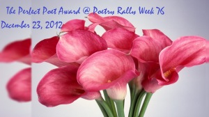 AWARD - The Perfect Poet of 2012 Award at Poets Rally 12-12