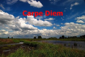 Logo - Carpe Diem - December 2012