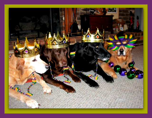 2013 - Happy Mardi Gras