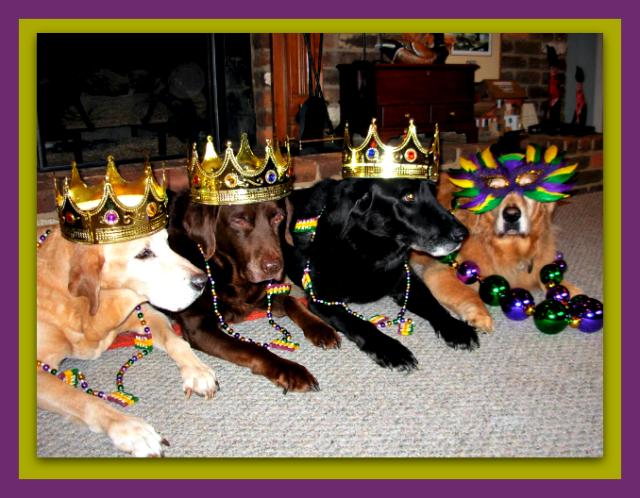 2013 - Happy Mardi Gras