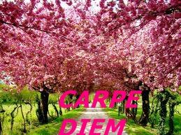 LOGO - Carpe Diem logo April 2013