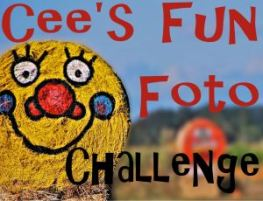 PHOTO CHALLENGE LOGO - cees-fun-foto