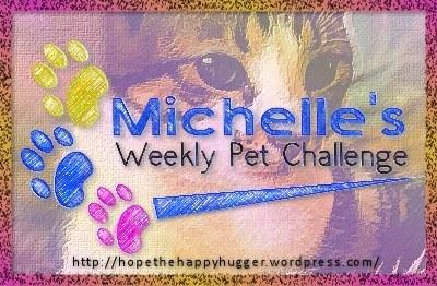 LOGO - Michelle's Pet Challenge