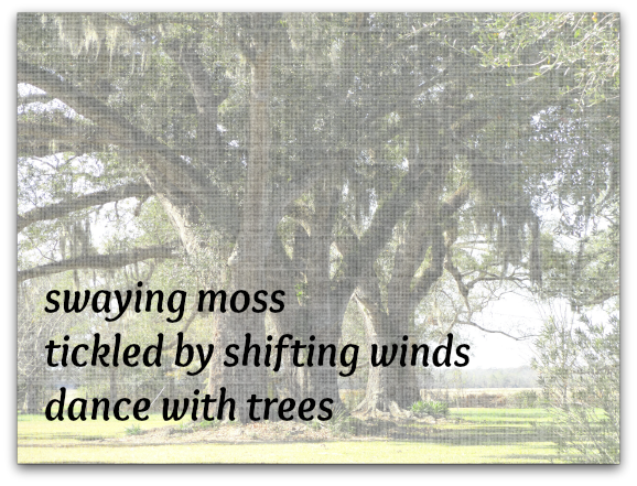 Dance with Trees