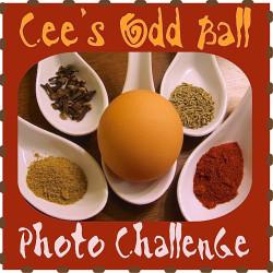 LOGO - Cees Odd Ball