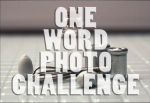 LOGO - one-word-photo-challenge-badge