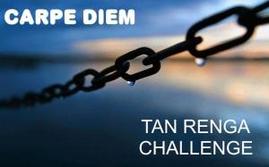 LOGO - Carpe Diem Tan Renga Challenge Sept 2014