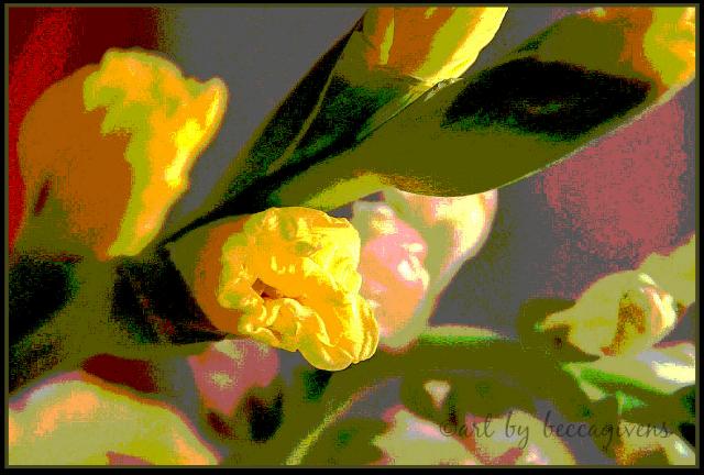 monday yellow - 102c