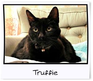 14 - Truffie