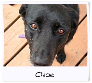 8 - Chloe