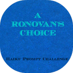 LOGO - ronovans_choice
