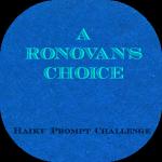 LOGO - ronovans_choice