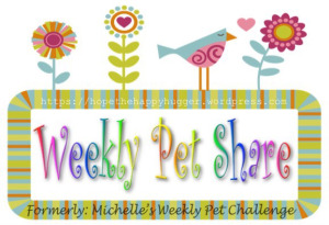 LOGO - Michelle's Pet Share