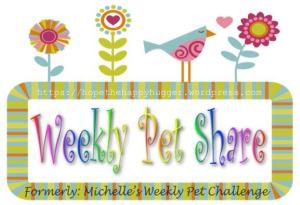 LOGO - Michelle's Pet Share
